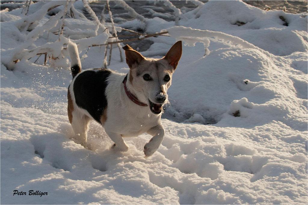 she loves snow