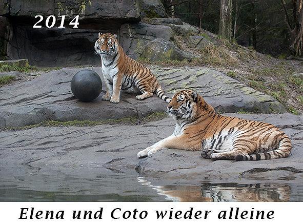 1401-Elena-und-Coto-wieder-alleine.jpg